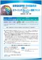 エマージング・カレンシー・債券ファンド(毎月分配型) 【新生インベストメント・マネジメント株式会社】