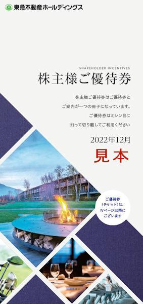 ホールディングス 東急 株価 不動産 東急不動産ホールディングス (3289)